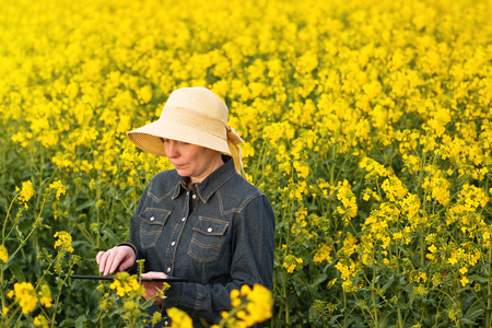 Female Farmer using Digital Tablet Computer in Oilseed Rapeseed Cultivated Agricultural Field Examining and Controlling The Growth of Plants photo