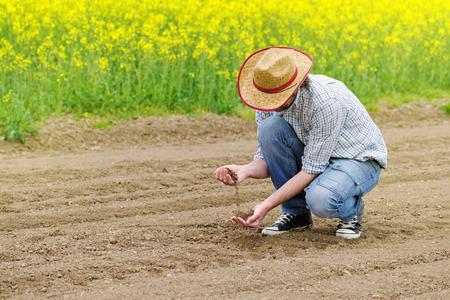 agronomist: Male Farmer Examines Soil Quality on Fertile Agricultural Farm Land, Agronomist Checking Soil in Hands.