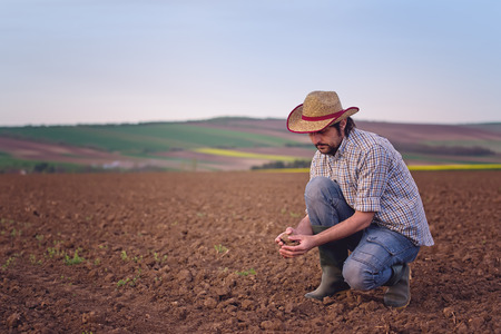 soil: Male Farmer Examines Soil Quality on Fertile Agricultural Farm Land