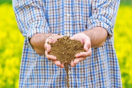 agricultural farm land: Male Farmer Examines Soil Quality on Fertile Oilseed Rapeseed Agricultural Farm Land Stock Photo