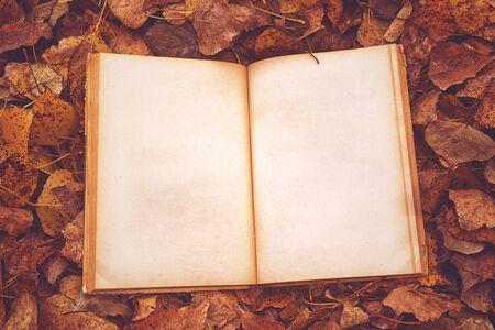 hojas secas: Libro de la vendimia con páginas en blanco como espacio de la copia en otoño las hojas caídas de fondo, vista desde arriba, retro Imagen virada