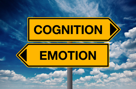 Cognition versus Emotion, Directional Street Sign Concept of Choice Stock Photo