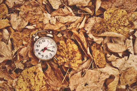 ancient pass: Vintage alarm clock in dry autumn leaves, Passing of time and season change concept. Selective focus, Top View