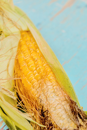 undeveloped: Bad rotten corn ear on rustic wooden table, undeveloped maize ear, selective focus with shallow depth of field.