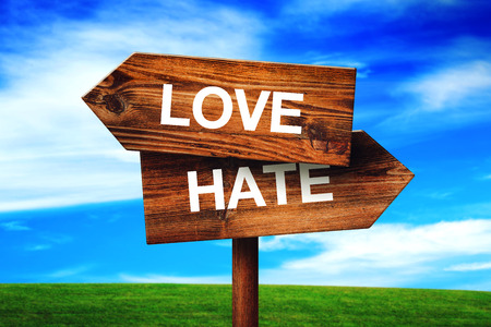 romantic love: Love or Hate Choice Concept, Direction Signpost with Grassland and Blue Sky as Background. Stock Photo