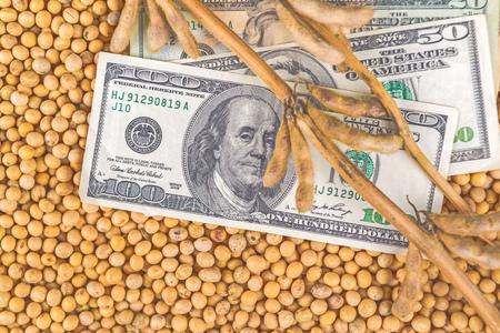 planta de frijol: Hacer ganancias del cultivo de soja, la planta de soja, vainas y frijoles cosechados a finales del verano del campo cultivado con billetes de dólar EE.UU., la vista superior desde arriba.