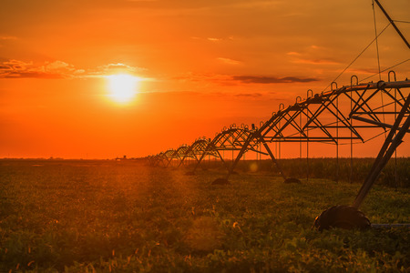 pivot: Automated farming irrigation pivot sprinkler system in soy field in sunset