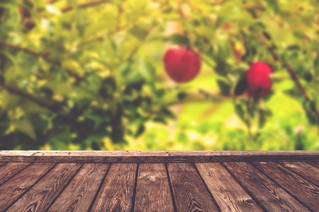 product placement: Apple orchard background, wood table for product placement, selective focus, retro toned image