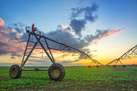 irrigation: Automated farming irrigation sprinklers system on cultivated agricultural landscape field in sunset Stock Photo
