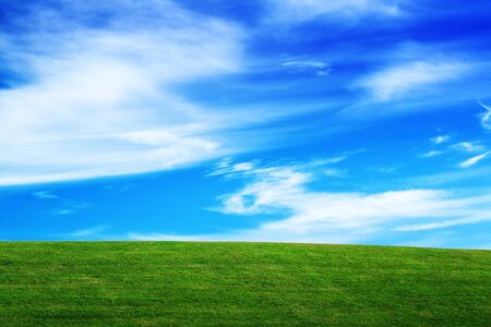 meadow: Grassland and Sky, Horizon over Field, Open Empty Green Grass Countryside Meadow and Blue Sky with Clouds, Beautiful Spring Season Natural Scene