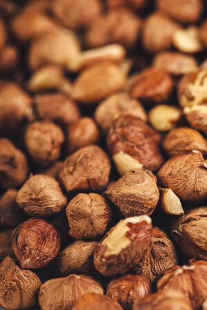 plenty: Plenty of ripe hazelnutsl, healthy edible organic hazel nuts, macro shot with selective focus