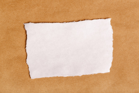ripped: Scrap paper piece as copy space, top view, paper material texture as background for text message or graphic.