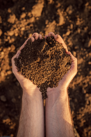 Arable land soil in hands of a responsible farmer, male caucasian farmer holding pile of soil, agronomist preparing land for new crop raising season, close up of hands.