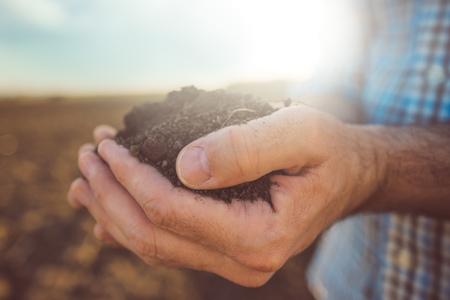 Farmer die stapel teelaarde, mannelijke landbouwkundige onderzoek van de kwaliteit van de vruchtbare landbouwgrond, close-up met selectieve aandacht