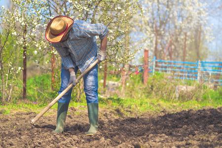 Man hoeing vegetable garden soil, new growth season on organic farm. Stock Photo