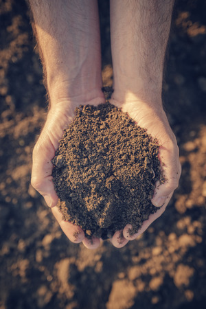 agronomist: Farmer holding pile of arable soil and examining its quality on fertile agricultural land, male agronomist preparing land for new seedingg season, close up of hands.