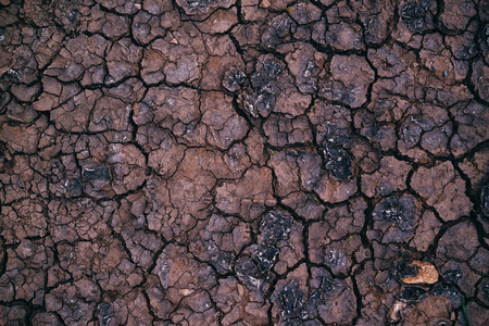 desiccation: Soil drought, cracks in dry land, natural texture