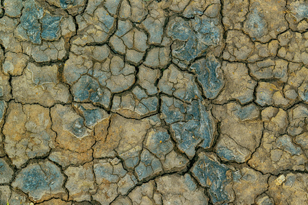 waterless: Mudcracks and soil drought, surface of dry waterless land in summer