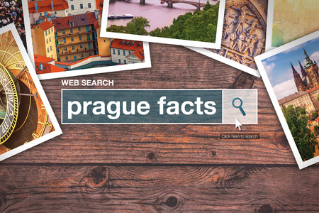 glossary: Prague facts - web search bar glossary term on internet.