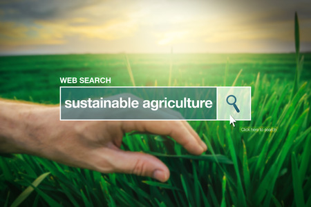 search bar: Sustainable agriculture - web search bar glossary term on internet Stock Photo