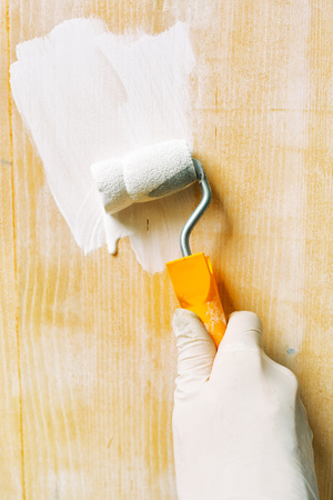non toxic: Hand with paint roller applying acrylic lacquer on wooden board, non toxic water based lacquer wood coating for furniture redecorating. Stock Photo