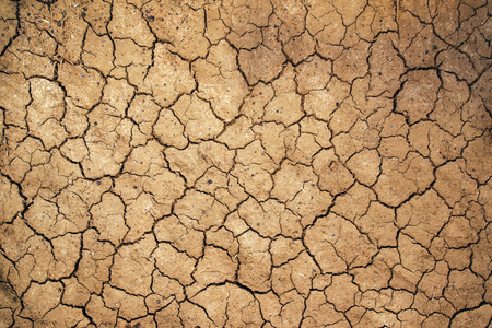 Mud cracks in dry earth texture, arable soil during dry season in nature as weather or climate change background