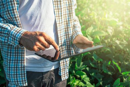 Farmer met behulp van digitale tablet-computer in geteelde soja gewassen veld, moderne technologie toepassing in de landbouw toenemende activiteit, selectieve aandacht