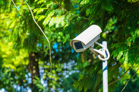 monitoring system: CCTV security camera for activity monitoring and surveillance in green park Stock Photo