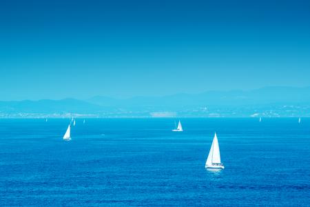 sea scenery: White yachts sailing at sea, idyllic summertime scenery
