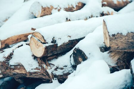 logs: Pile of cut wood logs under white winter snow Stock Photo