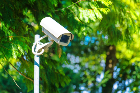 CCTV security camera for activity monitoring and surveillance in green park Stock Photo