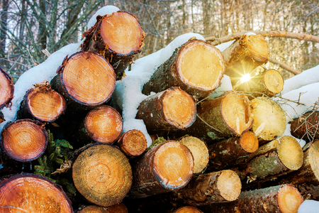 Firewood stack under snow in the backyard Stock Photo