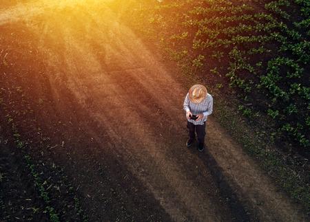 テンサイ畑、農産物の電子、技術およびモバイル アプリを使用して近代的なスマート農業の概念でドローンを使用して農家 写真素材