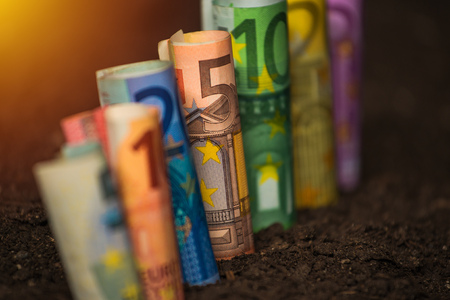 Earning income from agricultural activity, euro banknotes in fertile soil, selective focus Stock Photo