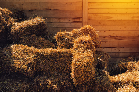 Dry baled hay stack, rural countryside background Stock Photo