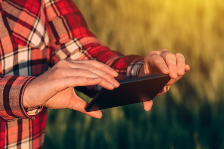 Agronomist using smart phone camera mobile app to photograph crops in cultivated field