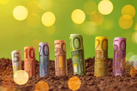 productive: Rolled euro banknotes in soil, making money in agricultural production