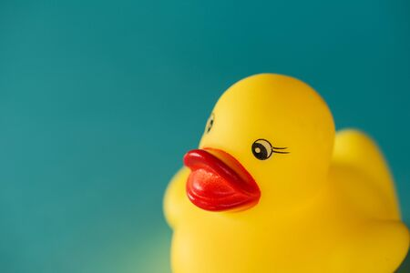 Yellow rubber duck toy on blue background with copy space