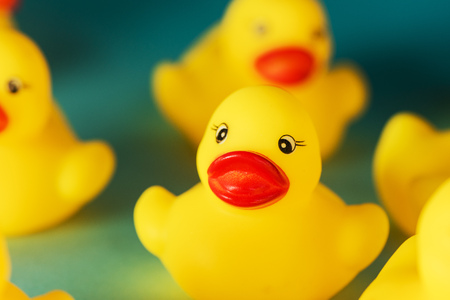 Group of yellow rubber duck toys on blue background, selective focus