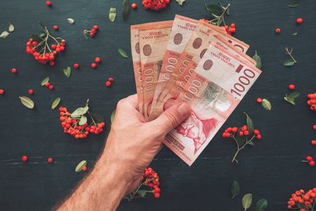 Invest in dinar stock photos royalty free invest in dinar images hand holding serbian currency thousand dinars banknotes top view of decorative arrangement with wild berry m4hsunfo