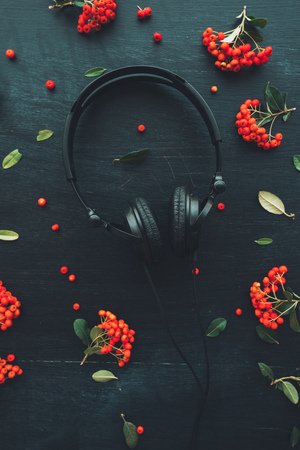 Flat lay audio headphones on dark wooden background with floral arrangement, top view nostalgic retro toned image