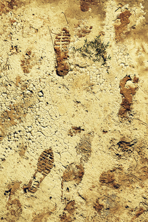 Human shoeprint or footprint on dry mudcrack ground surface
