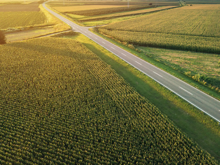 Aerial view of two-lane freeway road through countryside and cultivated field of corn in summer sunset