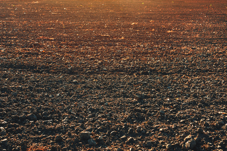 Arable ploughed land soil as background or natural texture in diminishing perspective Reklamní fotografie - 109084470