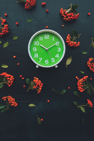 Plastic green alarm clock on dark wooden background, flat lay top view minimal composition with retro wild berry fruit arrangement