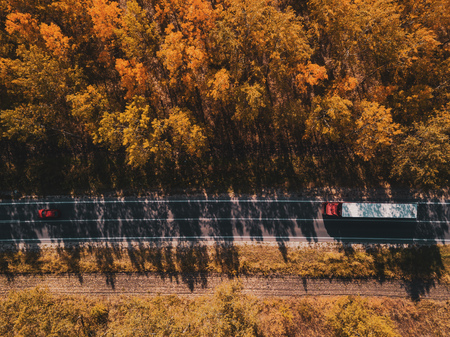 Aerial view of car and truck on road through forest in autumn, drone point of view directly above