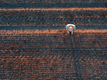 Top view of male farmer flying a drone with remote control in harvested wheat stubble field in summer sunset