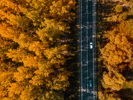 Aerial view of two cars on road through forest in autumn, drone point of view directly above Standard-Bild