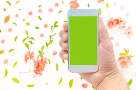 Mobile phone mock up in male hand with springtime decoration. Man holding smartphone with blank screen, flat lay top view arrangement with spring flower petals and leaves.
