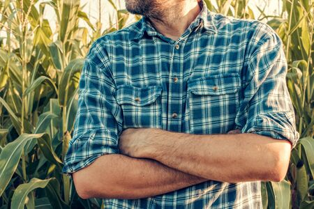 Insecure farmer with arms crossed in defensive pose standing in the corn field Stock Photo